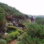 Тропа на Матахив хребет