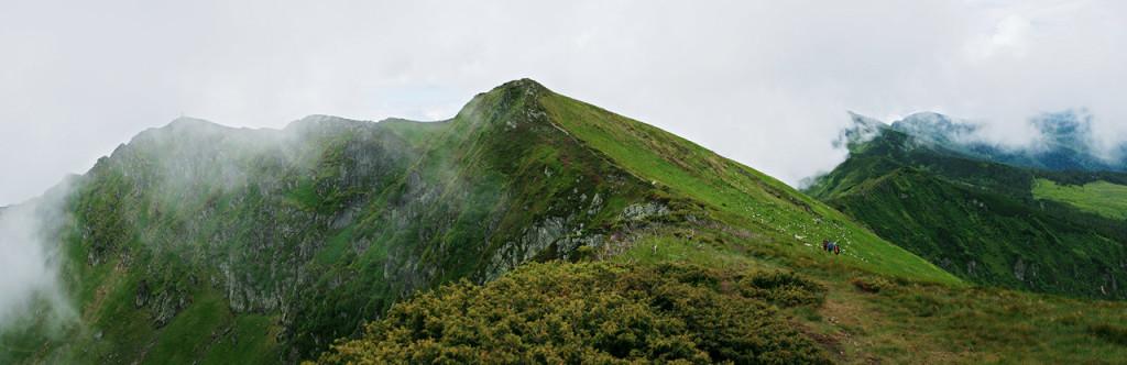 Поп Иван Марморошский. Вершина горы летом. Овцы пасутся на самой вершине.