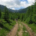 Gadzhyna-road