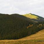 _MG_1215 Panorama-small